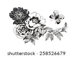 hand drawn garden flowers with... | Shutterstock .eps vector #258526679
