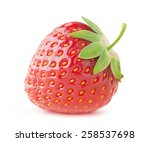 isolated strawberry. single... | Shutterstock . vector #258537698