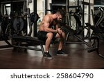portrait of a physically fit... | Shutterstock . vector #258604790