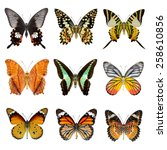Butterfly Collection  Set Of...