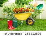 Wheelbarrow With Gardening...