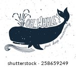 hand drawn grunge illustration... | Shutterstock .eps vector #258659249