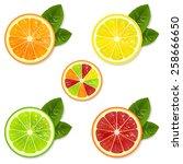 citrus fruit slice set of... | Shutterstock .eps vector #258666650