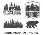 bear emblems | Shutterstock .eps vector #258749756