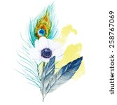 Watercolor  Flowers  Feathers ...