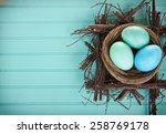 dyed easter eggs in a nest on a ... | Shutterstock . vector #258769178