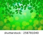 illustration of green leaves... | Shutterstock .eps vector #258781040