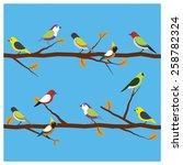 Birds Different On Branch...