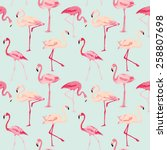 Flamingo Bird Background  ...