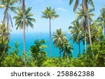 view of nice tropical...   Shutterstock . vector #258862388