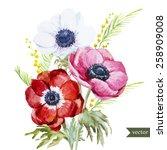 Watercolor  Flowers  Anemones ...