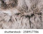 white grey wolf fox fur natural ... | Shutterstock . vector #258917786