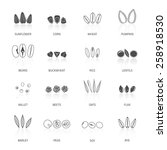 plant seed icon black set with... | Shutterstock .eps vector #258918530