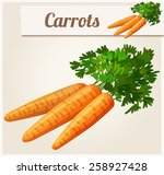 carrots. detailed vector icon.... | Shutterstock .eps vector #258927428