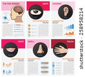 the five senses chart diagram... | Shutterstock .eps vector #258958214
