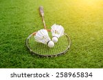Shuttlecocks And Badminton...