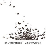 butterflies black design | Shutterstock .eps vector #258992984