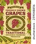 retro grapes poster. fully... | Shutterstock .eps vector #259048856