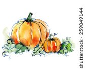ripe orange two pumpkins with... | Shutterstock .eps vector #259049144