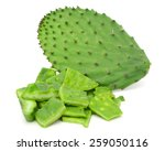 green cactus leaves  food | Shutterstock . vector #259050116