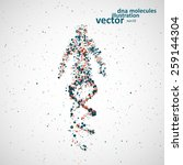 futuristic model of man dna ... | Shutterstock .eps vector #259144304