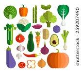 set of fresh healthy vegetables ... | Shutterstock .eps vector #259207490