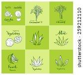 set of food ingredients  ... | Shutterstock .eps vector #259212110