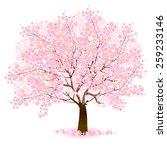 cherry blossom background | Shutterstock .eps vector #259233146