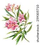 watercolor painting of flower... | Shutterstock . vector #259305710