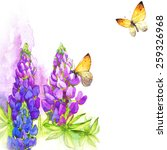 watercolor butterfly  lupins ... | Shutterstock . vector #259326968