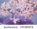 Purple Lilac Flowers Vase