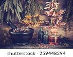 vintage stylized photo of ... | Shutterstock . vector #259448294