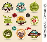 organic and ecology web icon... | Shutterstock .eps vector #259480034