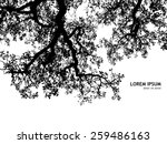 background silhouette of tree...