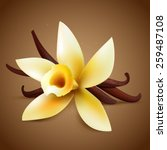 realistic vanilla flower with... | Shutterstock .eps vector #259487108