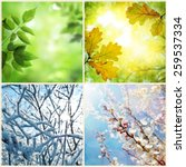 Four Seasons. A Pictures That...