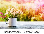 summer or spring beautiful... | Shutterstock . vector #259692659