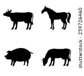 farm animals vector set.... | Shutterstock .eps vector #259726460
