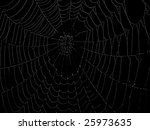 spider web with dewdrops | Shutterstock . vector #25973635