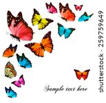 Stock vector background with colorful butterflies vector 259759649