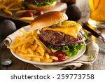 grass fed bison hamburger with...   Shutterstock . vector #259773758