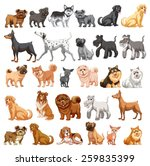 different type of dogs small... | Shutterstock .eps vector #259835399
