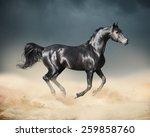 arab horse running in desert   Shutterstock . vector #259858760
