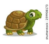 Cute Cartoon Turtle  Isolated...