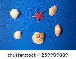 group of crustacean and one... | Shutterstock . vector #259909889