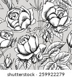 seamless pattern rose real... | Shutterstock .eps vector #259922279
