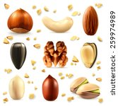 nuts  vector icon set | Shutterstock .eps vector #259974989