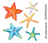 Collection Of Starfish...