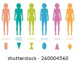 female body types anatomy woman ... | Shutterstock .eps vector #260004560