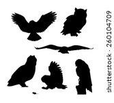 owl set of silhouettes vector | Shutterstock .eps vector #260104709